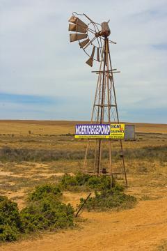 Windmill - West Coast