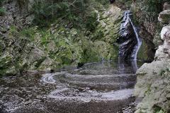 GARDEN ROUTE NP: Wildernis birding and waterfall hiking